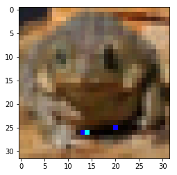 Frog Adversarial Example